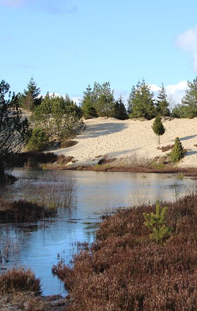 scandic ved søerne glatbarberet kusse
